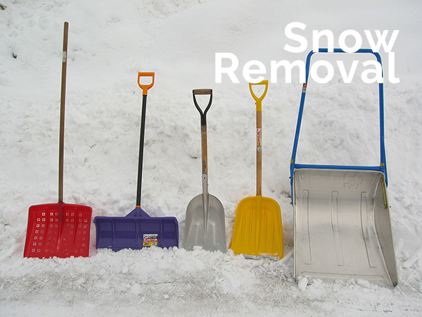 senior snow removal spokane
